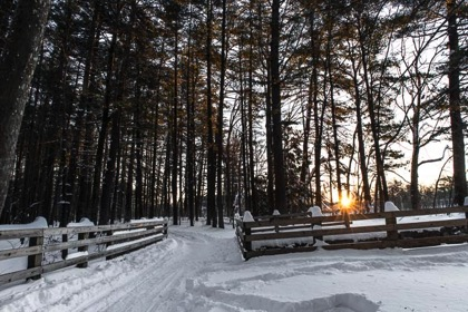 Wordless Walk in Winter